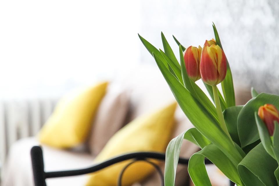 4 sposoby na to, aby w domu zawsze pięknie pachniało